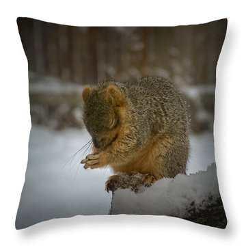Prayer Time Throw Pillow by Ernie Echols