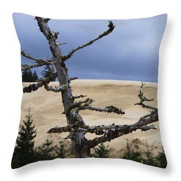 Pre Storm Throw Pillow by Adria Trail