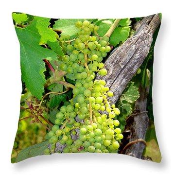 Pre-vino Throw Pillow by Patrick Witz