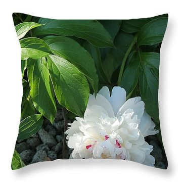 Precious Peony Throw Pillow