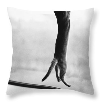 Predator Prey Cat Style Throw Pillow by Joan Baron