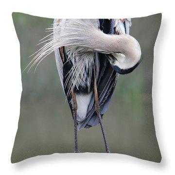 Preening Heron Throw Pillow