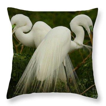 Preening Pair Throw Pillow