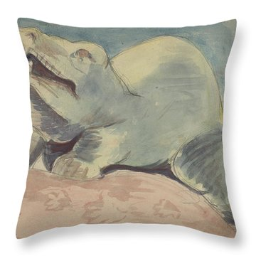 Natural History Museum Throw Pillows