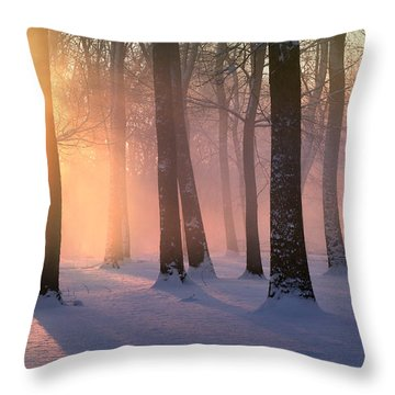 Presence Of Light Throw Pillow
