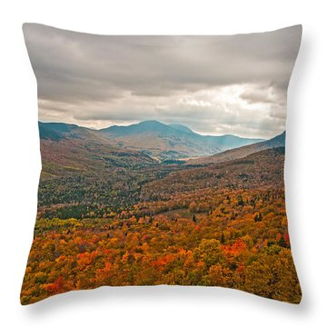 Presidential Colors Throw Pillow by Brenda Jacobs