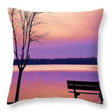 Presque Isle Solitude 11.12.12 Throw Pillow
