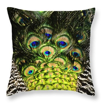Throw Pillow featuring the photograph Pretty Boy Blue by Sherri Meyer