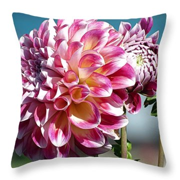 Pretty Dahlias Throw Pillow by Janice Drew