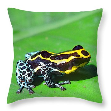 Pretty - Deadly Throw Pillow