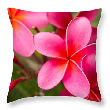 Pretty Hot In Pink Throw Pillow by Denise Bird