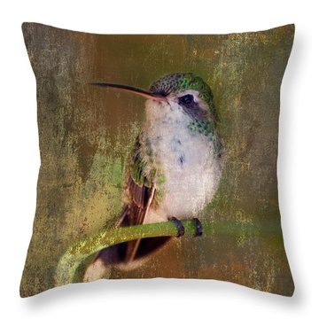 Pretty Hummer Throw Pillow by Barbara Manis