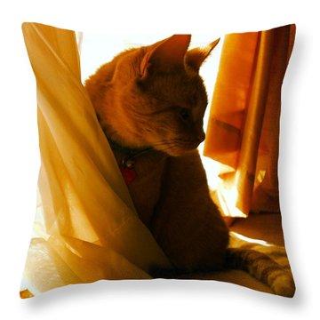 Pretty In Orange Throw Pillow