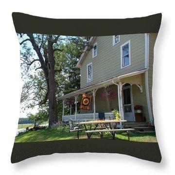 Throw Pillow featuring the photograph Pretty In Pennsylvania by Barbara McDevitt