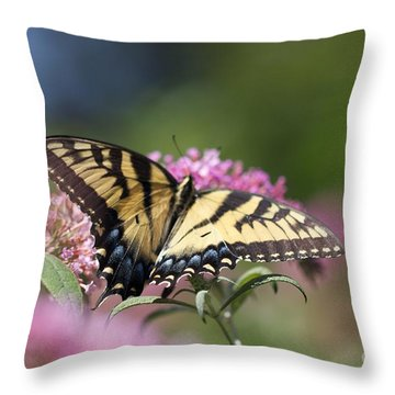 Pretty In Pink All Profits Go To Hospice Of The Calumet Area Throw Pillow