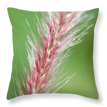 Throw Pillow featuring the photograph Pretty In Pink by Bianca Nadeau