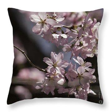 Pretty In Pink Blossom  Throw Pillow by Arlene Carmel