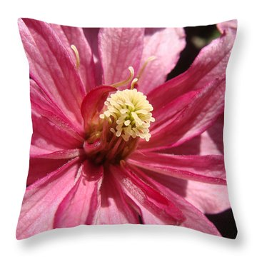 Pretty In Pink Throw Pillow by Cheryl Hoyle