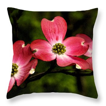 Throw Pillow featuring the photograph Pretty In Pink by James C Thomas