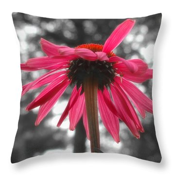 Pretty In Pink Throw Pillow by Joann Vitali