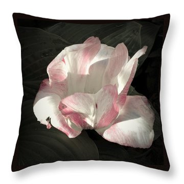 Throw Pillow featuring the photograph Pretty In Pink by Photographic Arts And Design Studio