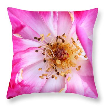 Pretty In Pink Rose Close Up Throw Pillow by Sabrina L Ryan