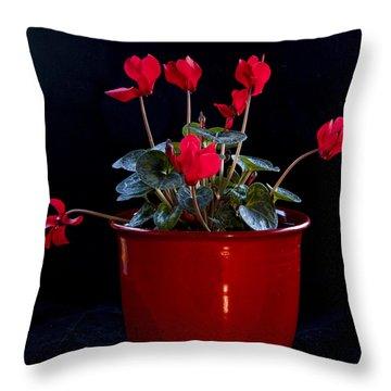 Pretty Throw Pillow by Jean Noren