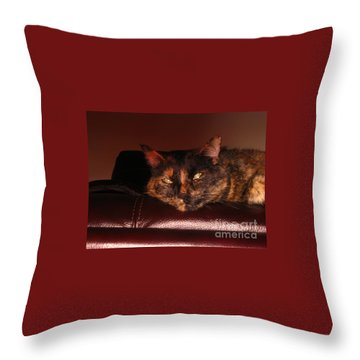 Throw Pillow featuring the photograph Pretty Kitty by Oksana Semenchenko
