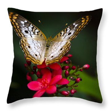 Pretty Little Butterfly  Throw Pillow by Saija  Lehtonen
