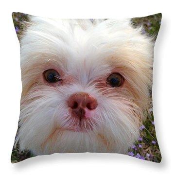 Pretty Little Face Throw Pillow