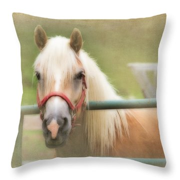Pretty Palomino Horse Photography Throw Pillow