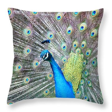 Throw Pillow featuring the photograph Pretty Peacock by Elizabeth Budd
