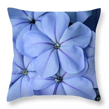 Pretty Plumbago Throw Pillow by Sabrina L Ryan
