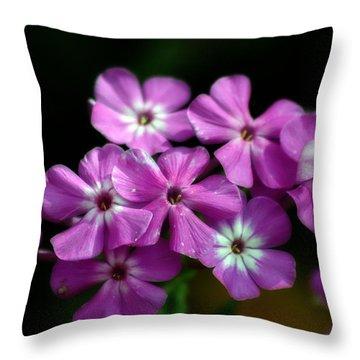 Pretty Purple Throw Pillow