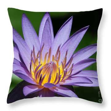 Pretty Purple Petals Throw Pillow