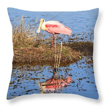 Pretty Spoonbill Throw Pillow