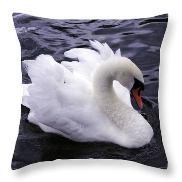 Pretty Swan Throw Pillow
