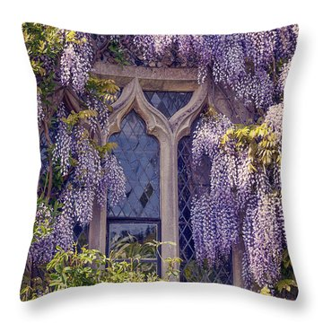 Pretty Window Throw Pillow by Svetlana Sewell