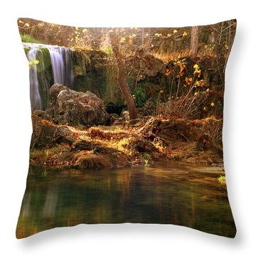 Throw Pillow featuring the photograph Price Falls 1 Of 5 by Jason Politte