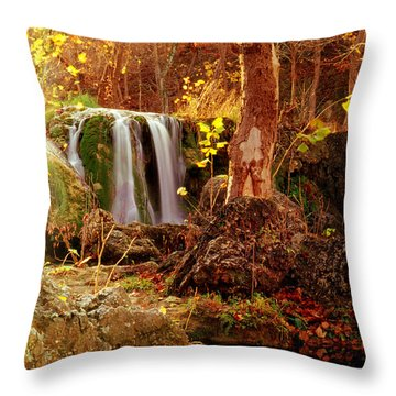 Throw Pillow featuring the photograph Price Falls 2 Of 5 by Jason Politte