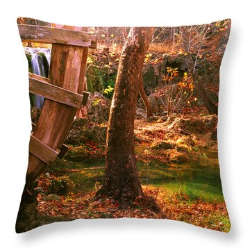 Throw Pillow featuring the photograph Price Falls 3 Of 5 by Jason Politte