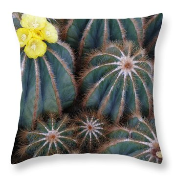 Throw Pillow featuring the photograph Prickly Beauties by Evelyn Tambour