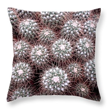 Throw Pillow featuring the photograph Prickly Business by Mary Bedy