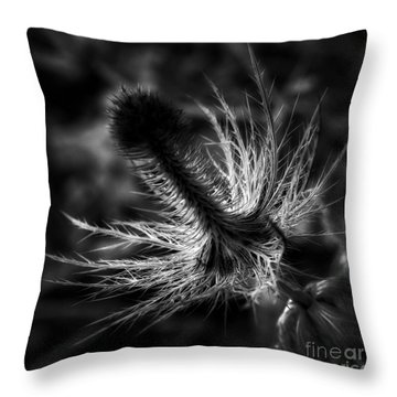 Throw Pillow featuring the photograph Prickly by Inge Riis McDonald
