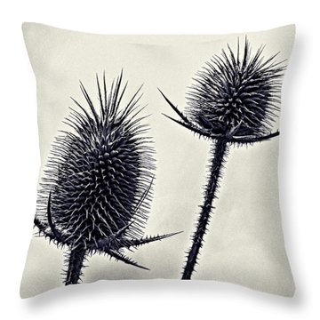 Prickly Throw Pillow by John Hansen