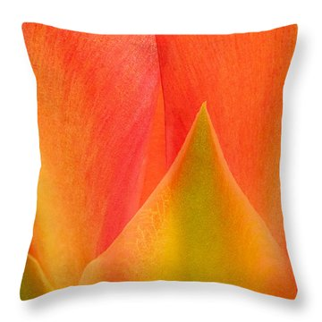 Throw Pillow featuring the photograph Prickly Pear Flower Petals Opuntia Lindheimeni In Texas by Dave Welling