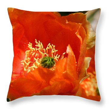 Prickly Pear In Bloom Throw Pillow by Joe Kozlowski