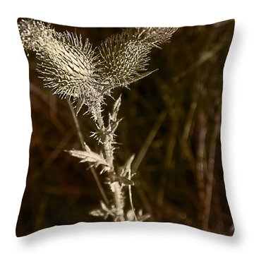 Prickly To The End Throw Pillow by Jo-Anne Gazo-McKim