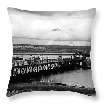 Priddy's Hard Jetty Throw Pillow by Terri Waters