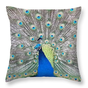 Throw Pillow featuring the photograph Pride by Caryl J Bohn
